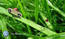 The Beetle way von miona