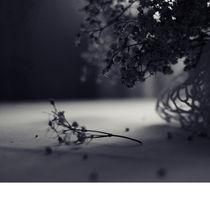 Fallen-by-csaby1-d1v9jm9