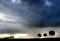 Unwetter am Niederrhein by Torsten Reuschling
