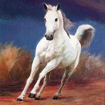 white horse von Nilgün Gedik
