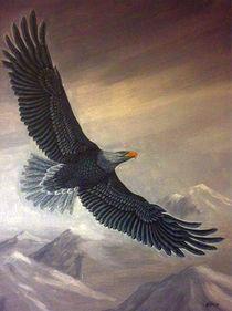 eagle on the high by Nilgün Gedik