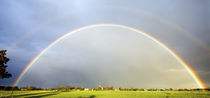 Double rainbow in field by Johan Wouters
