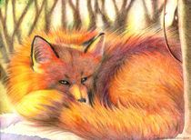 The fox von Francesca Zambon