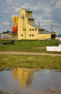 Last of the Grain Elevators, Balzac, Alberta von Louise Heusinkveld