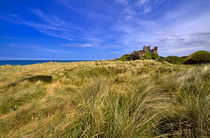 Dunes below Bamburgh Castle, Northumberland.  by Louise Heusinkveld