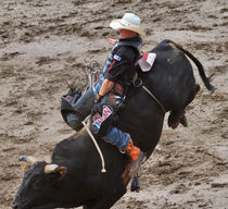 Bull-riding0718