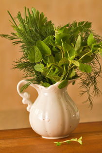 Fresh Herbs for the Kitchen by Louise Heusinkveld