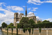 Notre Dame Cathedral, Paris by Louise Heusinkveld
