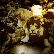We are lions. von Bernd Vagt