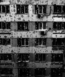 The word in her tears  by Ioana Sandu
