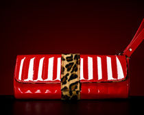 Handbag III von Marco Moroni