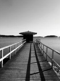 Striped-pontoon
