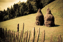 Haystacks, Transylvania  by Jamie Hunter