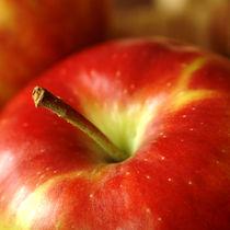 Apfel von Franziska Giga Maria