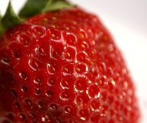 Erdbeere by Franziska Giga Maria