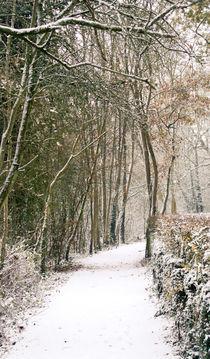 Winter Journey von Andy Smy