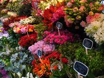 Paris Market Flowers -1 von kxl exk