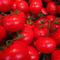 Paris-marche-tomatoes-1-300