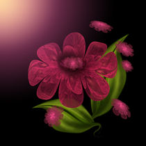 Luxurious-petals