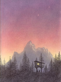 Evening in the Treehouse by Lisa Hamilton
