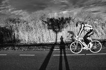 Cyclist and tree and shadow and me von Mabel Amber