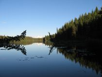 Dahl Lake von Lisa Hamilton