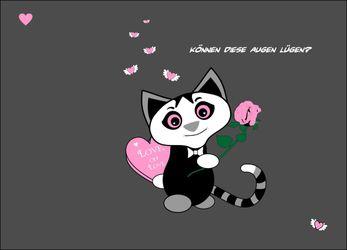 Kitten-verliebter-kater