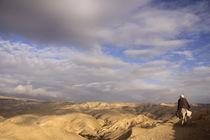A view of the Judean Desert by Hanan Isachar