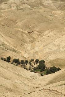Judean desert, a view of Wadi Qelt by Hanan Isachar