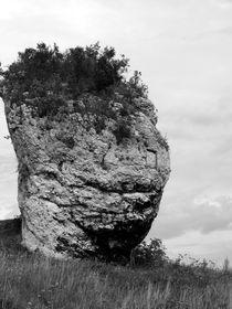 Smiling rock by kiellapa