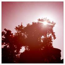 Scheinbare Sonne von iulia-spin