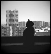 haunt me. by Aiste Ališauskaite