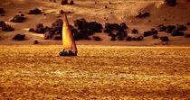 Sunset Sail, Lamu von David deVeson