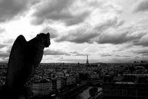 guarding Paris by Loukas Dimitropoulos