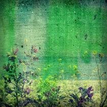Sommerregen2