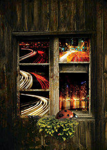 The urban look by Julie Aleksovska
