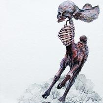 Running Buckskull by Rachel Meuler