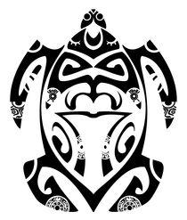 Tartaruga-maori