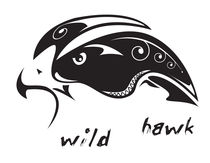 Wild hawk von William Rossin