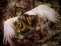 Rising angel by Kristina Kalcheva