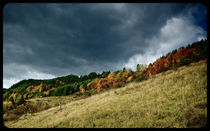 full color by Maciej Juszczak
