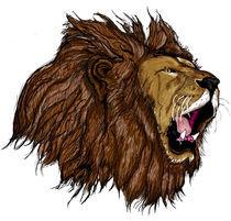 Lion  von emdesigns