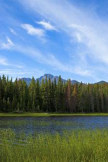 Lake Bierstadt and Longs Peak