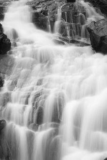 Fern Falls Detail