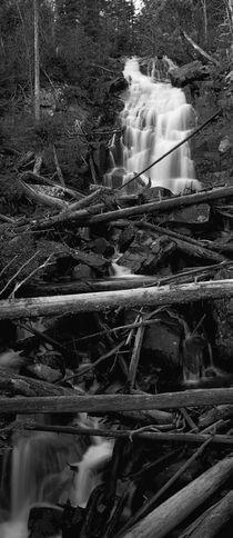 Fern Falls Vertorama