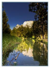Wald See by Chris Rüfli Photography