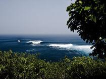 Der Lineup von Peahi auf Maui von Andy Fox