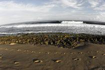 Fußspuren im Sand auf Puerto Rico by Andy Fox