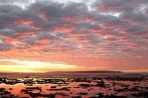 Eine Rifflandschaft auf den Philippinen im Sonnenuntergang by Andy Fox