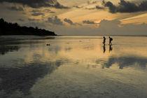 Spaziergänger am Riff in den Malediven von Andy Fox